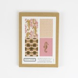 Seahorse Box Set